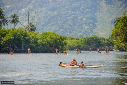 Passeio de canoa e stand up paddle na vegetação de mangue (man